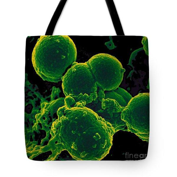 Neutrophil Ingesting Mrsa Bacteria, Sem Tote Bag by Science Source