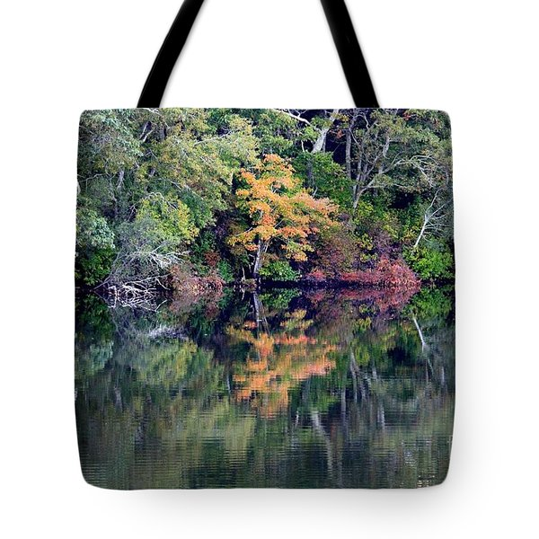 New England Fall Reflection Tote Bag by Carol Groenen