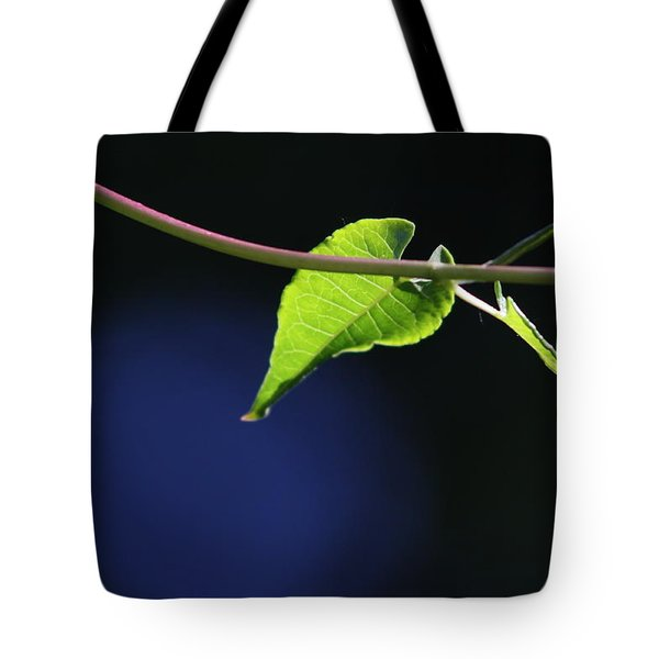 Tote Bag featuring the photograph New Growth by Cathie Douglas