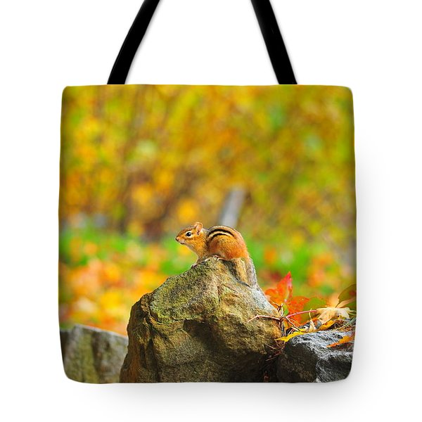 New Hampshire Chipmunk Tote Bag by Catherine Reusch Daley