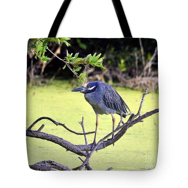 Night-heron Tote Bag by Al Powell Photography USA