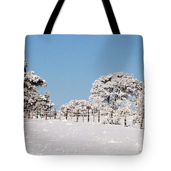 Tote Bag featuring the photograph Nine Below by Bob and Nancy Kendrick