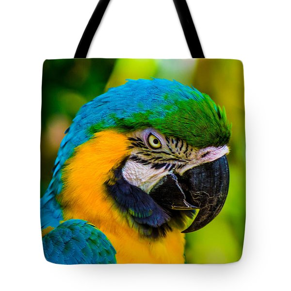 No More Crakers Tote Bag by Shannon Harrington