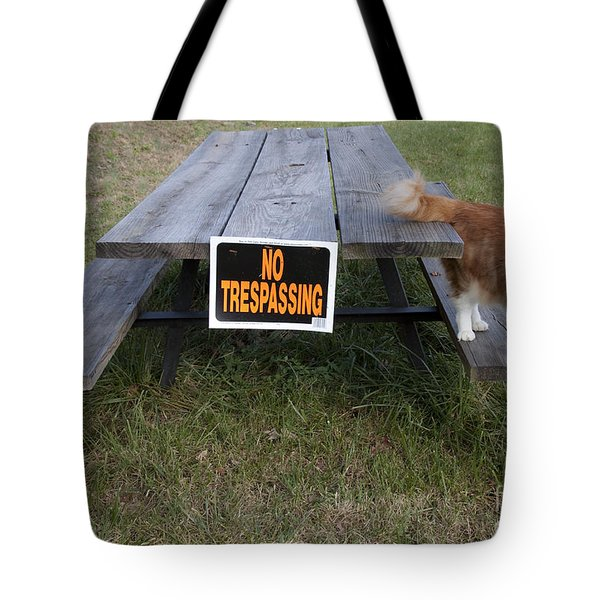 No Trespassing Tote Bag by Jeannette Hunt