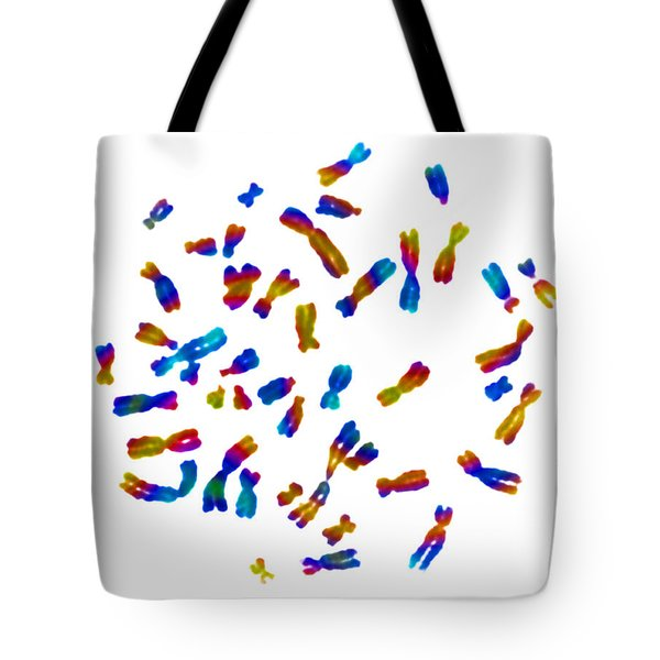 Normal Female Karyotype Tote Bag by Omikron