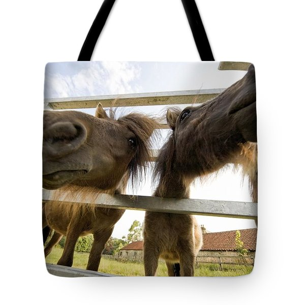 North Yorkshire, England Horses Looking Tote Bag by John Short