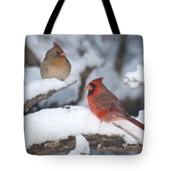 Northern Cardinal Pair 4284 2 Tote Bag by Michael Peychich