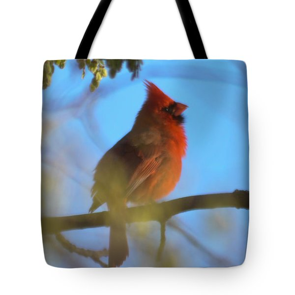 Northern Cardinal Tote Bag