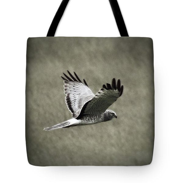 Northern Harrier Tote Bag