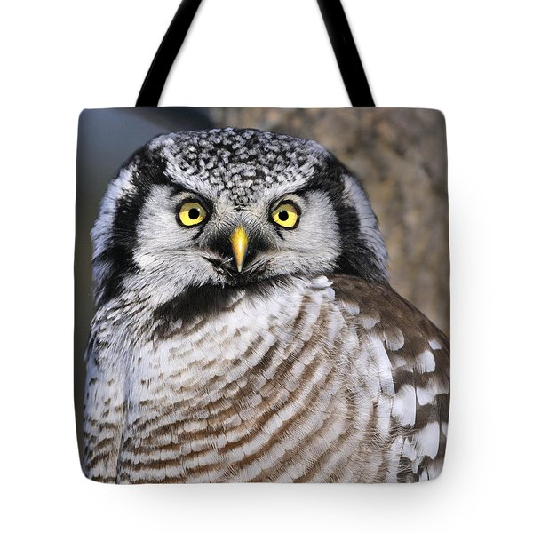 Northern Predator Tote Bag by Tony Beck
