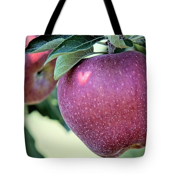 Not Far From The Tree Tote Bag