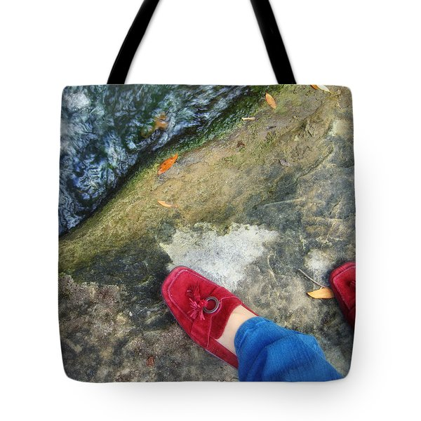 Not In Kansas Anymore Tote Bag by Donna Blackhall