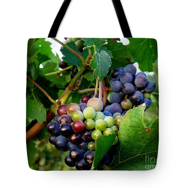 Tote Bag featuring the photograph Not Yet by Lainie Wrightson