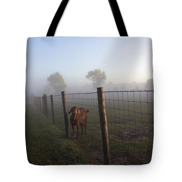 Tote Bag featuring the photograph Nubian Goat by Lynn Palmer