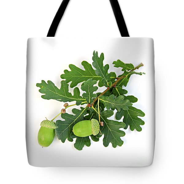 Oak Branch With Acorns Tote Bag by Elena Elisseeva