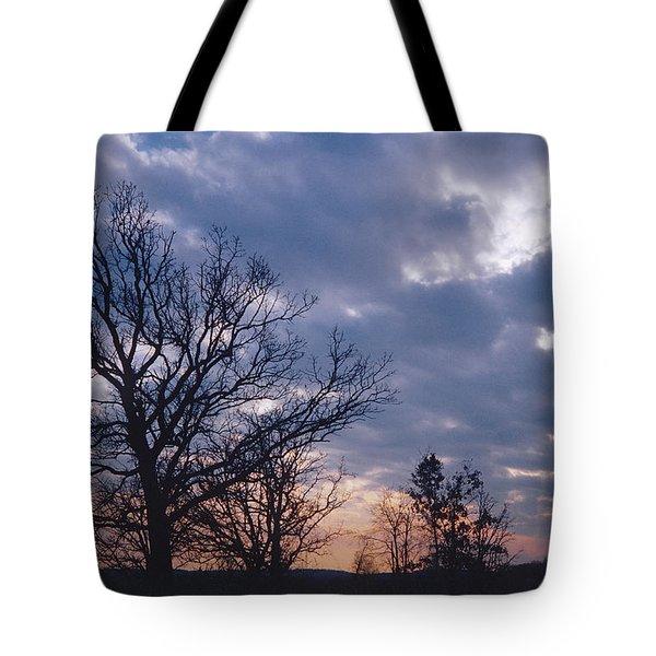 Oak In Sunset Tote Bag