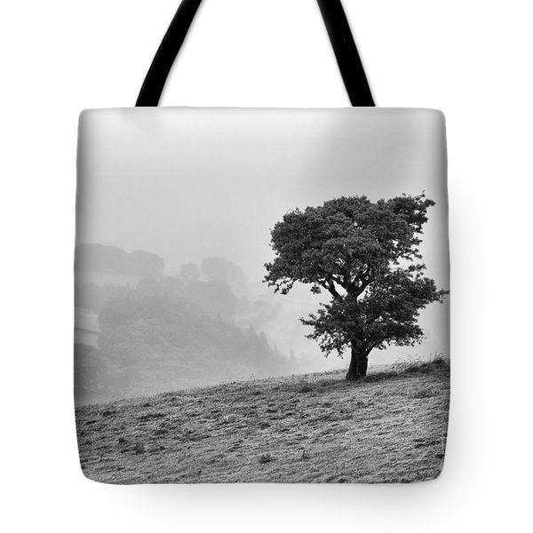Oak Tree In The Mist. Tote Bag by Clare Bambers