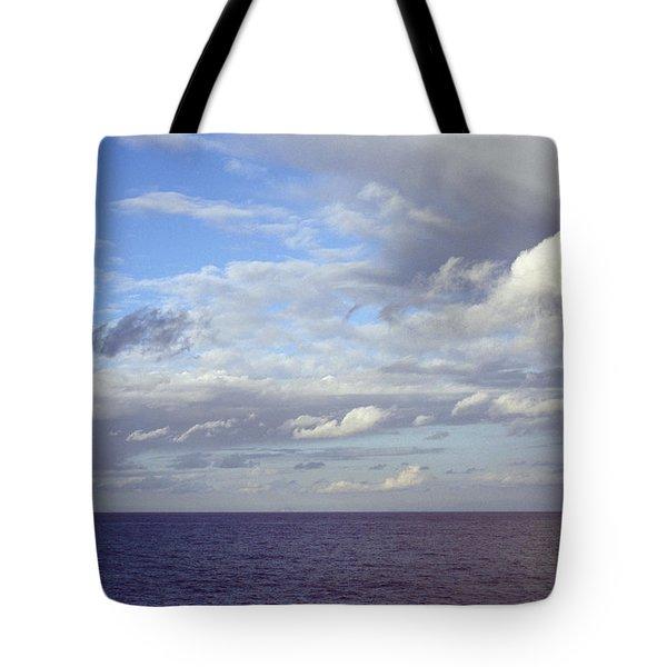Ocean View Tote Bag by Mark Greenberg