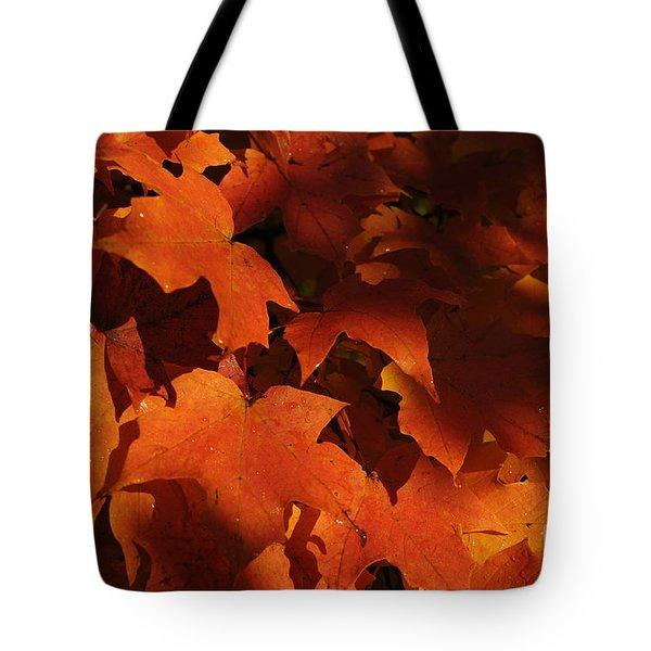 October Glow Tote Bag by Luke Moore