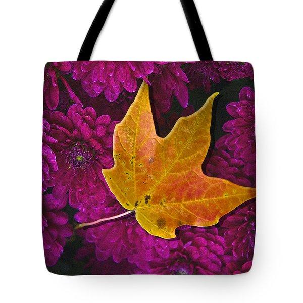 October Hues Tote Bag by Paul Wear