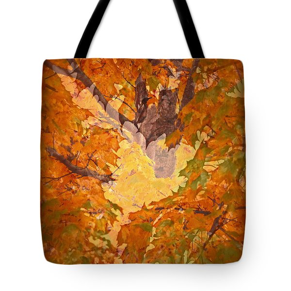 October In Washington Tote Bag by Gwyn Newcombe