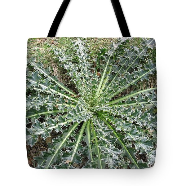 October Thistle Tote Bag by Mark Robbins