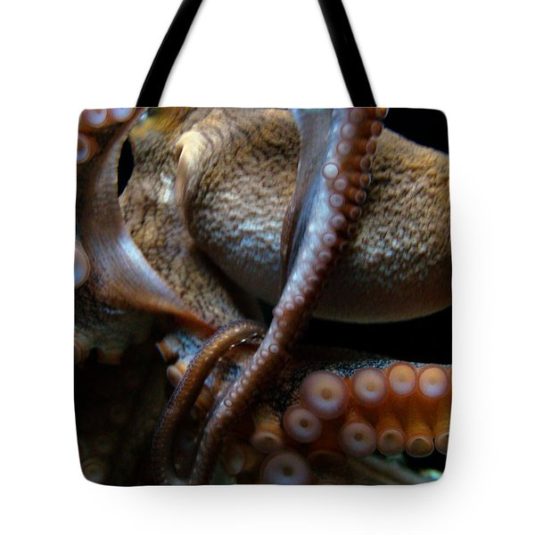 Octopus 1  Tote Bag
