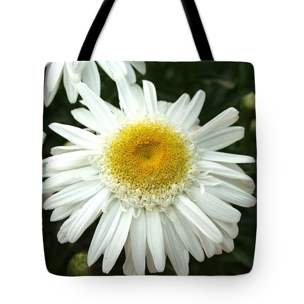 Tote Bag featuring the photograph Oh Daisy by Carol Sweetwood