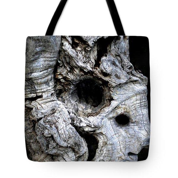 Old Ancient Olive Tree Spain Tote Bag by Colette V Hera  Guggenheim