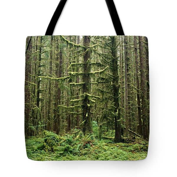 Old Growth Forest In The Hoh Rain Tote Bag by Natural Selection Craig Tuttle