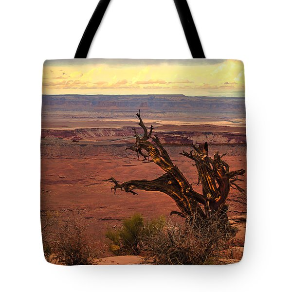 Old One Tote Bag by Robert Bales