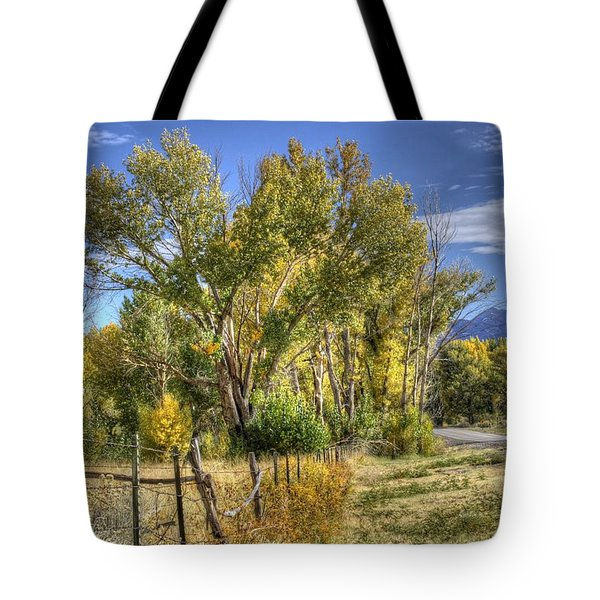 Old Ranch Near Bishop Tote Bag by Michele Cornelius
