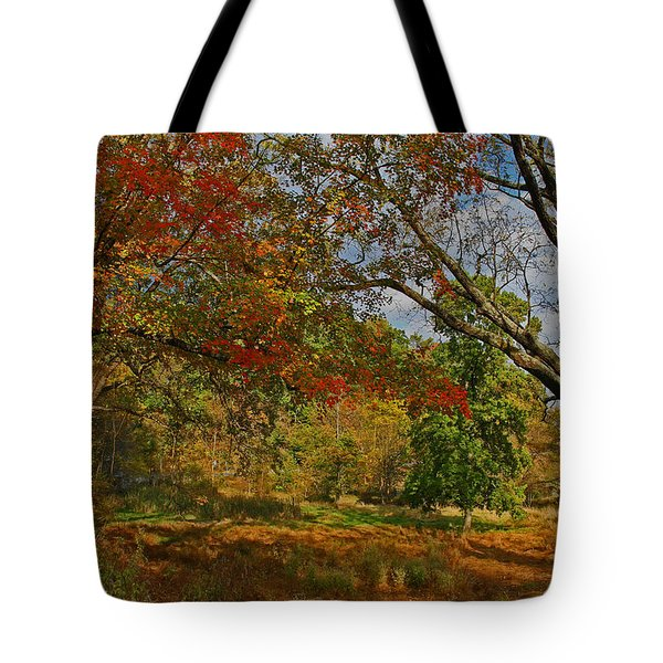 Old Tree And Foliage Tote Bag