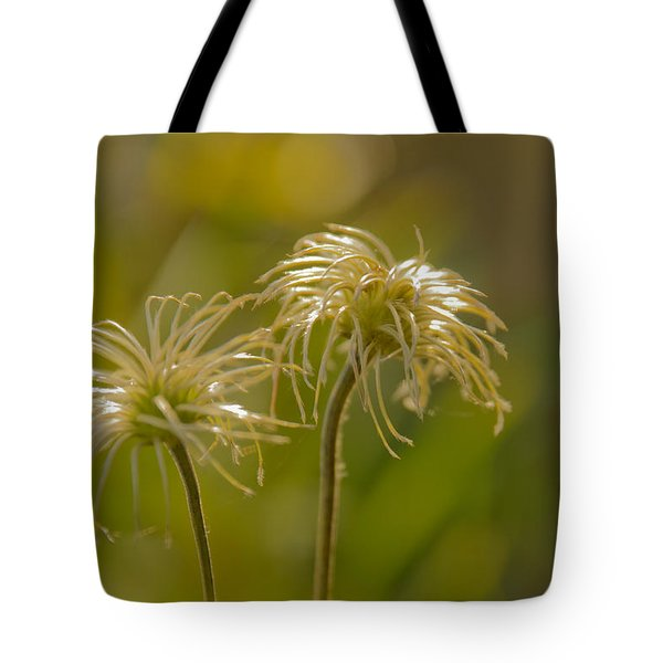 Oldness Tote Bag