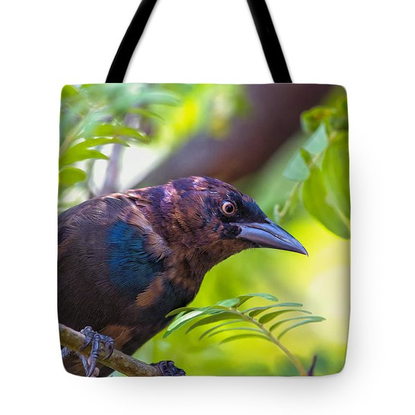 Ominous Molting Grackle Tote Bag by Bill Tiepelman