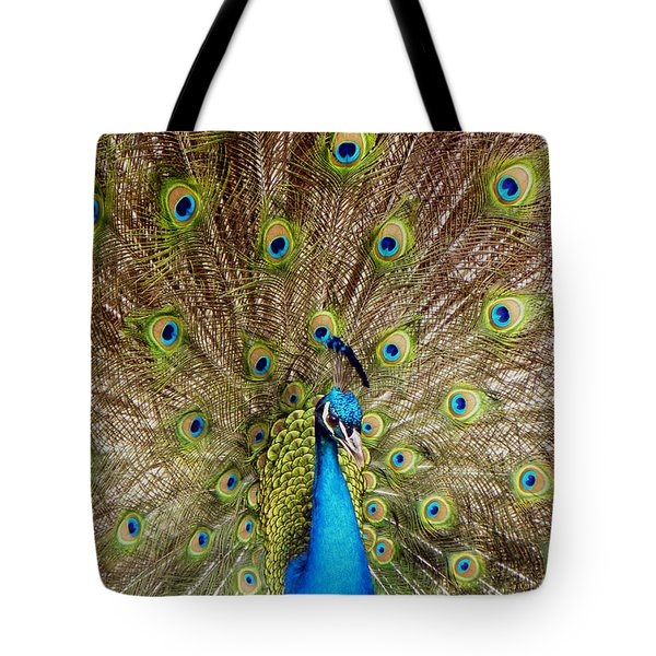 On Display Tote Bag by Sandi OReilly