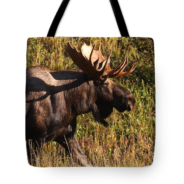 Tote Bag featuring the photograph On The Move by Doug Lloyd