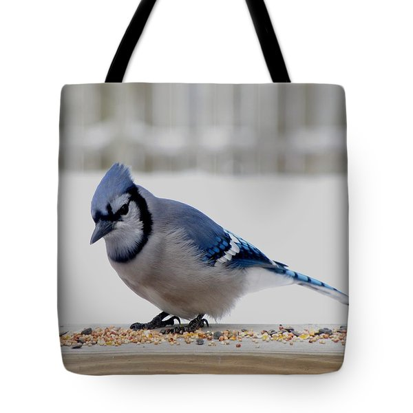 Tote Bag featuring the photograph Blue Jay by Maciek Froncisz