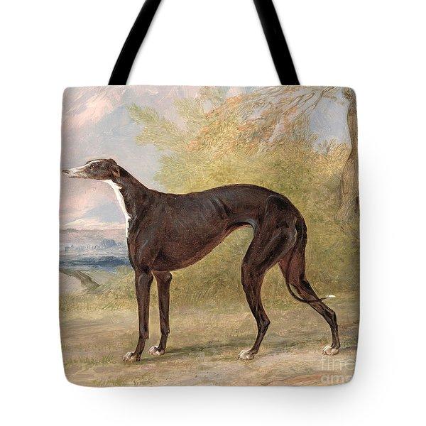 One Of George Lane Fox's Winning  Tote Bag by George Garrard