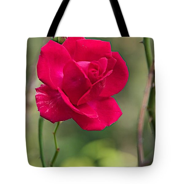 Tote Bag featuring the photograph One Rose by Joseph Yarbrough