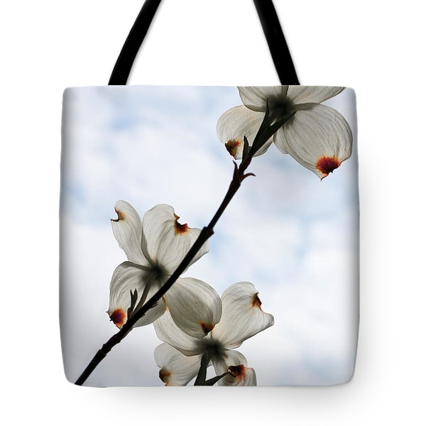 Tote Bag featuring the photograph Only Once A Year by Barbara McMahon