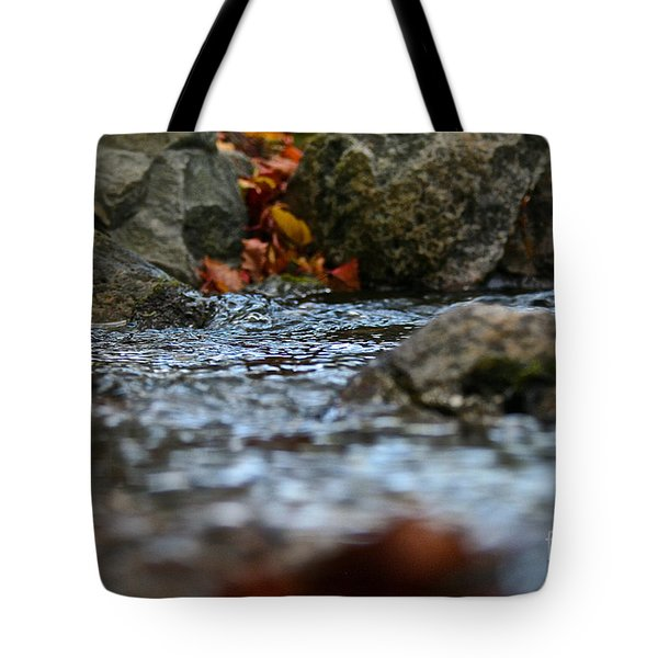 Opposite Shore Tote Bag by Susan Herber