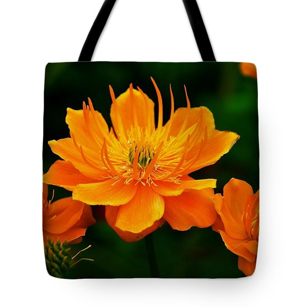 Orange And Yellow Tote Bag by Eric Tressler