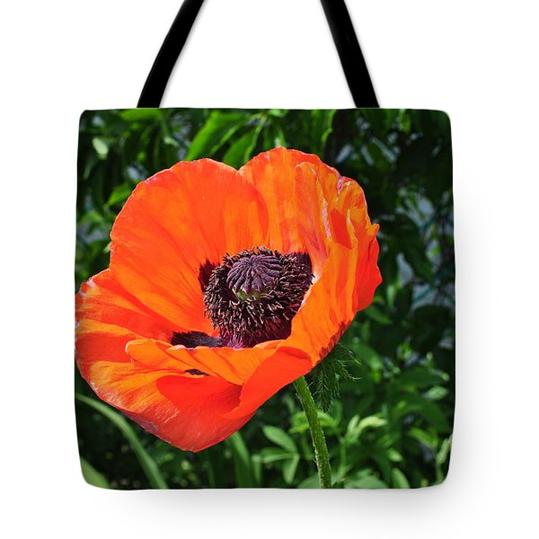 Orange Burst Tote Bag by Luke Moore
