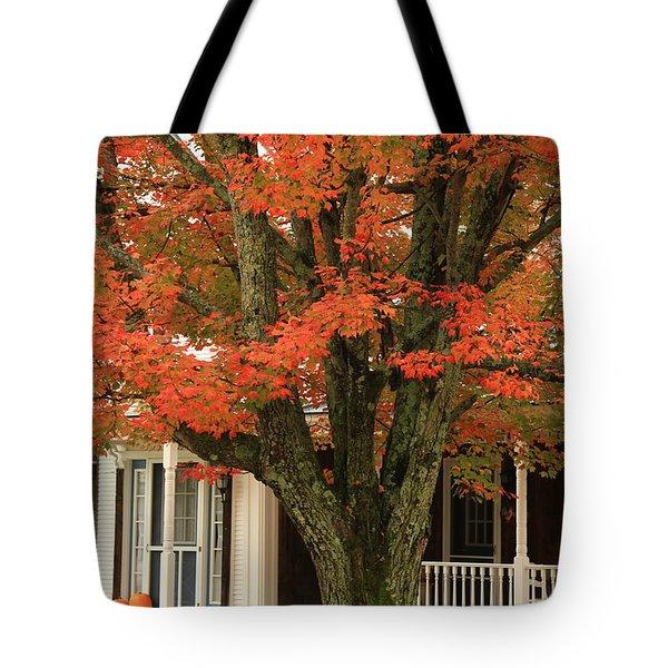 Orange Leaves And Pumpkins Tote Bag by Deborah Benoit