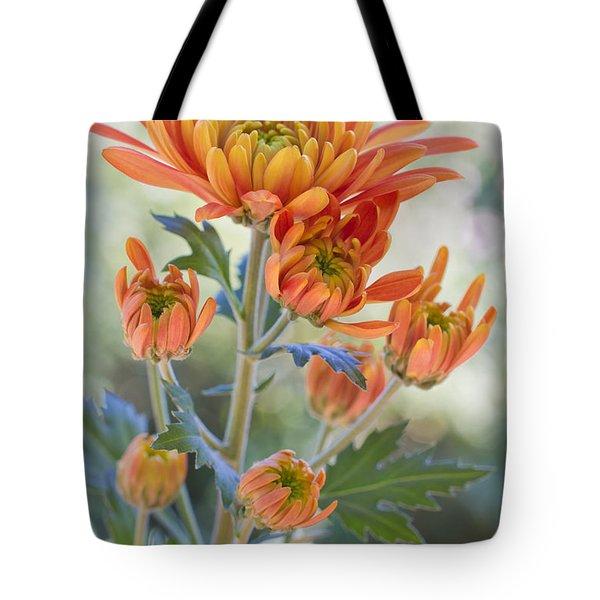 Orange Mums Tote Bag by Heidi Smith