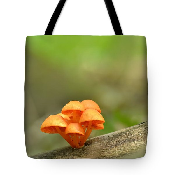 Tote Bag featuring the photograph Orange Mushrooms by JD Grimes