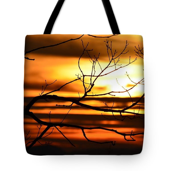 Tote Bag featuring the photograph Orange Zest by Cathy Shiflett