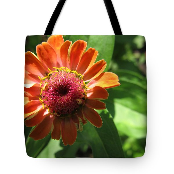Tote Bag featuring the photograph Orange Zinia by Tina M Wenger
