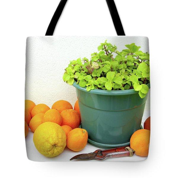 Oranges And Vase Tote Bag by Carlos Caetano